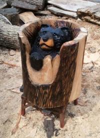 bear-in-log1