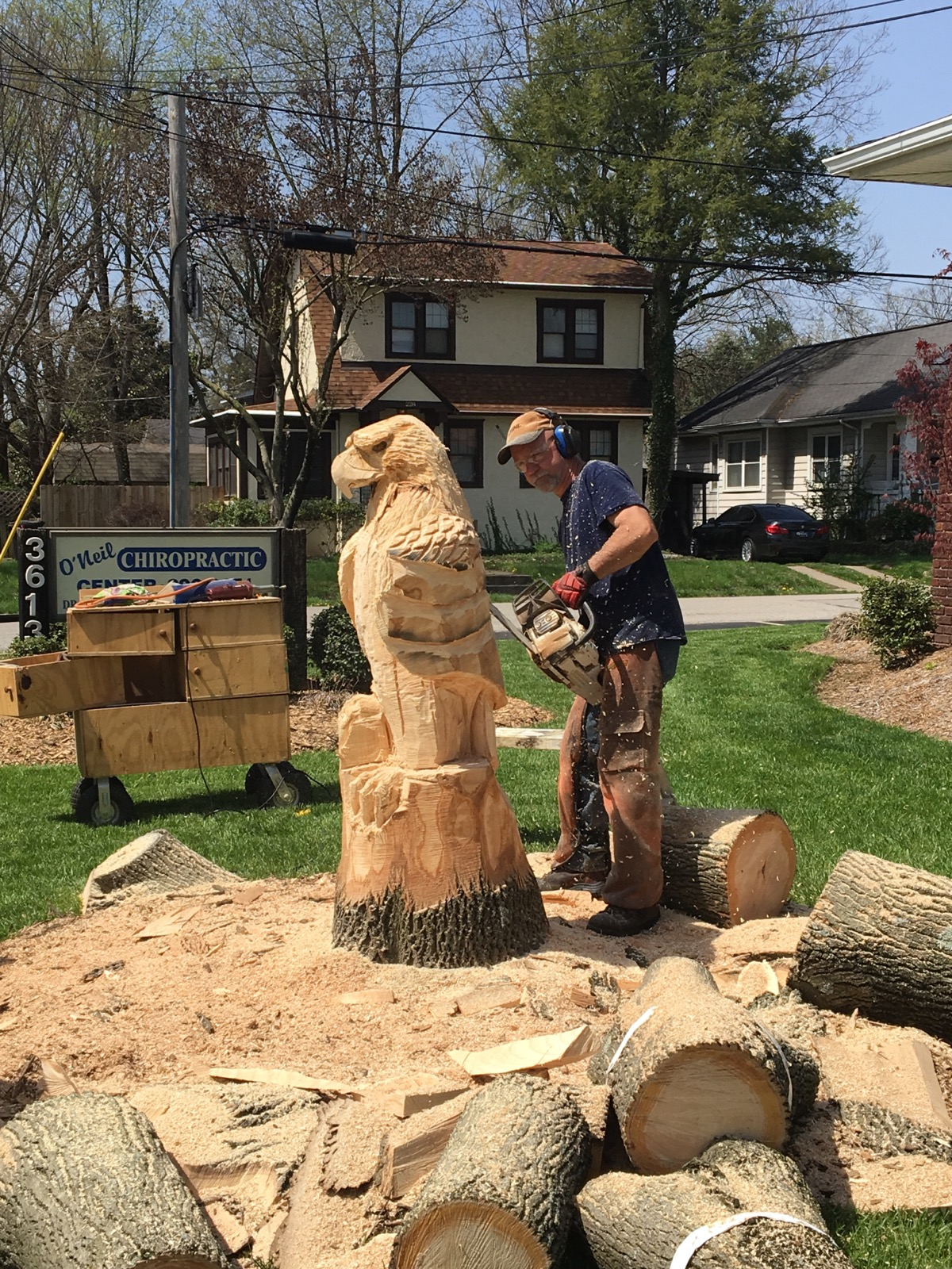 Christman s chainsaw carvings